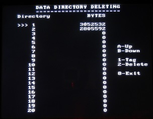 PulseEKKO Data Directory Deleting Screen